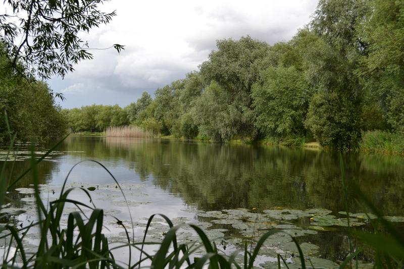 Pike fishing London